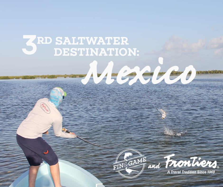mexico-saltwater-destinations-with-frontiers