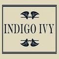 Indigo Ivy