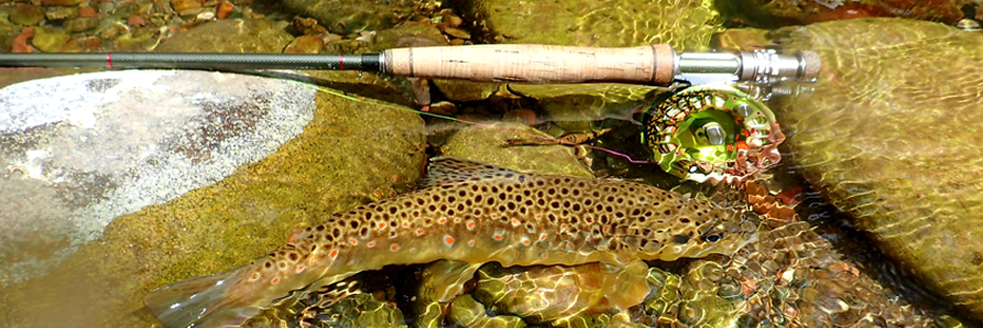 Preparing for the Early Brown Trout Fishing Season